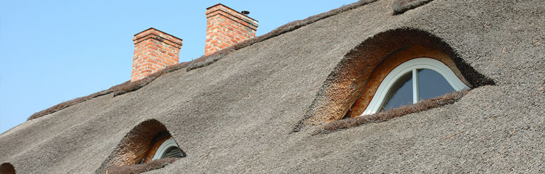 rieten dakbedekking Houthalen-Helchteren